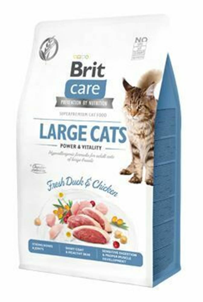 Brit Care Brit Care Cat GF Large cats Power&Vitality 0,4kg