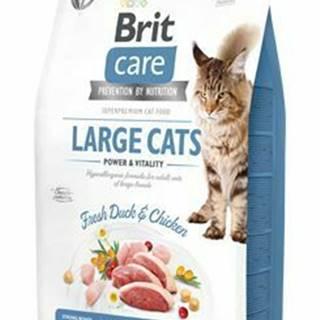 Brit Care Cat GF Large cats Power&Vitality 2kg