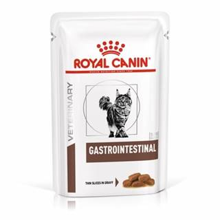 Royal Canin Veterinary Diet Cat GASTROINTESTINAL vrecko - 85g