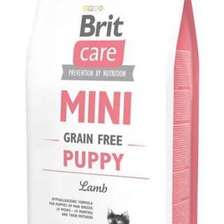 BRIT Care dog MINI GF PUPPY lamb - 400g