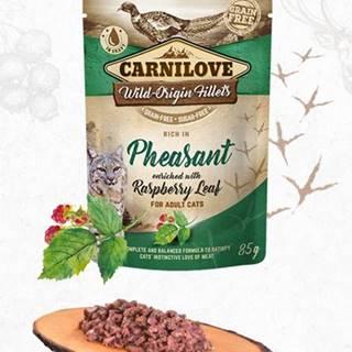 CARNILOVE cat   kapsa  ADULT  PHEASANT/rasberry - 85g