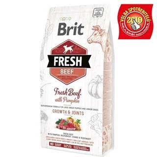BRIT FRESH PUPPY LARGE  beef/pumpkin - 2,5kg