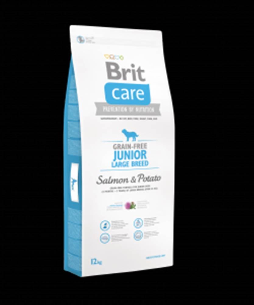 Brit Brit Care Dog Grain-free Junior LB Salmon & Potato12kg